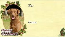 Chesapeake Bay Retriever Christmas Labels by Starprint