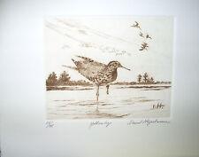 David  Hagerbaumer   Original Hand  Signed  Etching  Yellow legs   Shore  Bird