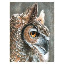 Sepia Owl - CPN19 Royal & Langnickel Pencil By Numbers
