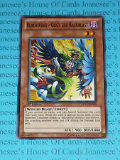 Blackwing - Gust the Backblast DP11-EN009 3 x Yu-Gi-Oh Card Playset 1st Ed Mint