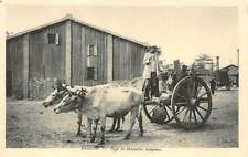 SAIGON, VIETNAM ~ DRIVER & HIS LOADED OX CART, POSED IMAGE ~ dated 1932