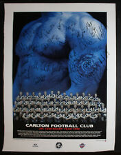 1996 Carlton Football Club team photo poster signed by the team Blues