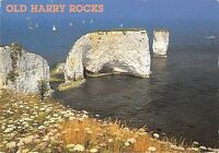BR83408 old harry rocks swanage dorset uk