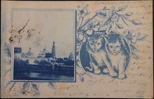 Russia-Ucraina 1907 PC POSTCARD kazatin-Andelfingen ch Kremin View Cats RARE