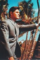 Jack Lord As Det. Steve Mcgarrett Hawaii Five-O 11x17 Mini Poster Palm Trees