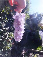 Antique Amethyst Quartz Grapes Bunch Brass Leaf Victorian From Devon Manor House
