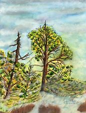 Snow in the Mountians Water Color and Pastel