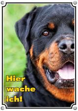 Hundeschild - ROTTWEILER - Metallschild - TOP Qualität