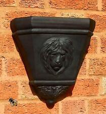 Wall Planter Rain Water Hopper Lion Head Large Garden Flower Pot New