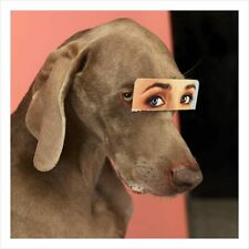 WILLIAM WEGMAN signed limited edition 2019 photograph Dog Weimaraner Dog eyes