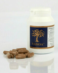 120 Funtumia elastica Capsules Food Supplement - Yamoa - 2 - 4 months' supply