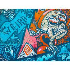 Graffiti Skull Fox Mural Large Canvas Wall Art Print