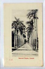 (Gx092-100) Botanical Gardens, CALCUTTA, India c1910 VG-EX, Perris #135