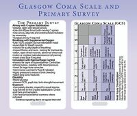 GCS + Primary Survey Trauma Lanyard Card - For Doctors, paramedics, nurses
