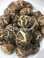 .5LB - 2LB ALL NATURAL PREMIUM DRIED SHIITAKE MUSHROOM, Fast/Free Shipping!!!