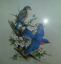 Roger Tory Peterson Bluebird Signed And Numbered Limited Edition Print