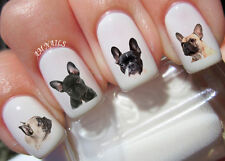 French Bulldog Nail Art Stickers Transfers Decals Set of 54
