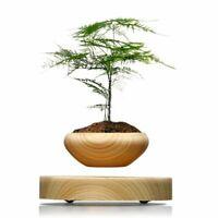 Magnetic Levitation Air Bonsai Suspension Levitating Flower Pot Plant LED Decor