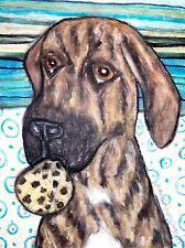 Plott Hound Eating Carob Chip Cookies Dog Art Print Signed by Artist Ksams 8x10