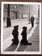 Robert Doisneau PRINT Vintage 2004 Photography Art Paris Black Dogs Rue Chapelle