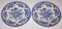 "PAIR OF ROYAL STAFFORD ENGLAND POWDER BLUE ASIATIC PHEASANT 11"" DINNER PLATES"
