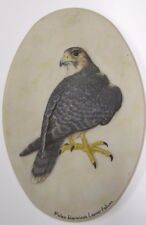 Oval Porcelain Resin Plaque Of A Lanner Falcon By C Hewins