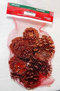 Pinecones Ashland Christmas Unscented Bag Around 12ea USA Decorations 45D