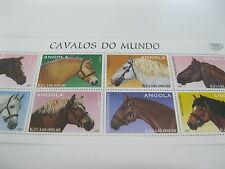 Angola-Fauna-Animals-Horses