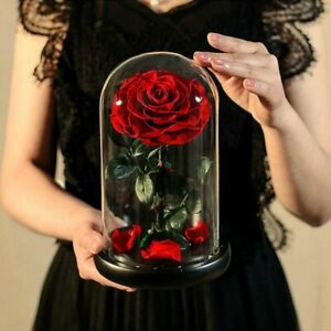 Preserved Flowers Red Eternal Rose In Glass Dome Valentine Gift For Girlfriend