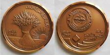 medaglia Egitto Africa Arabia medio oriente????