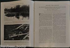 1928 magazine article, THE BEAVER, life, habitat, dam building etc