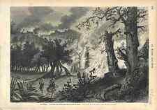 ALGÉRIE INCENDIE FORETS DE BONE D'APRES VAN ELVEN  1873