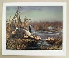 Vintage 1987 Ted Blaylock Canadian Geese Canada Goose Print