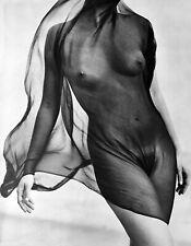 1984 HERB RITTS 16X20 Vintage Photo Gravure Surreal FEMALE NUDE Torso Veil Art