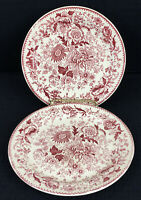 "TST Center Bouquet Red Smooth Rim 6.5"" Bread Dessert Plates Set Of 2 Small Chips"