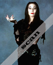 THE ADDAMS FAMILY Movies Anjelica Huston as Morticia 8X10 PHOTO #1439