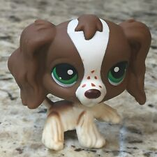 Littlest Pet Shop Auth. Brown/White Cocker Spaniel #156 Green US SELLER 9 Pics