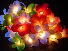 New LED Mixed Colour Frangipanni Fairy Light 20 Flowers UK CE Plug Frangipani