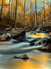 AUTUMN RIVER i ciottoli Motion PHOTO art print poster foto bmp1546a