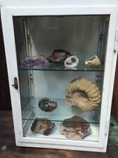 VINTAGE Medical armadietto di vetro e metallo industriale officina bagno