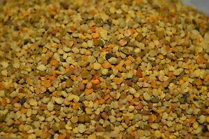 Raw Bee pollen quality granules manufacture in Poland pylek pszczeli 10g - 1kg