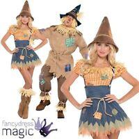 Adult Mens Ladies Scarecrow Book Week Film Couples Fairytale Fancy Dress Costume