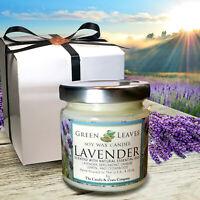 Handmade Lavender Soy Candle, Smells AMAZINGI Gift Box Included, Free Shipping!