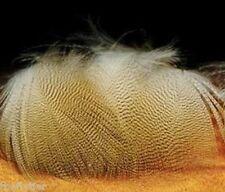 Woodduck Lemon Feathers Fly Tying Wood Duck Flank