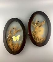 Vintage Set Of 2 Wooden Glass Dried Flowers Butterfly Rosas Wall Hangings
