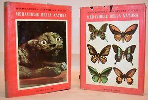 Figuier MERAVIGLIE DELLA NATURA 2 Vol 1955 Astra Illustrato Zoologia Entomologia