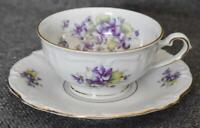 LOVELY ROYAL CASTLE BAVARIAN GERMANY VIOLET OF THE ALPS CUP AND SAUCER - HAVE 7
