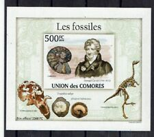 FOSSILES Comores bloc /1 ND de 2010 ** PREHISTORY PRÄHISTORISCHE TIERE DINOSAURE