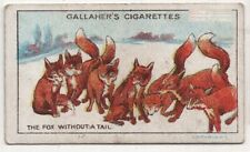 The Fox Without A Tail Aesop's Fable Moral Story 1920s Trade Card