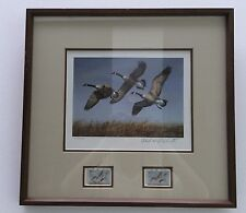 1982 North Dakota Duck Stamp print and Stamp Framed #9723 by Richard Plasschaert